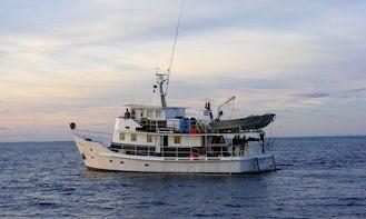 63' Fishing Yacht Charter In Queensland