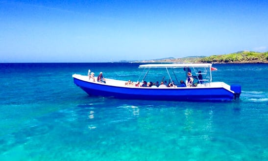 Boat Diving Trips In West Bay, Honduras