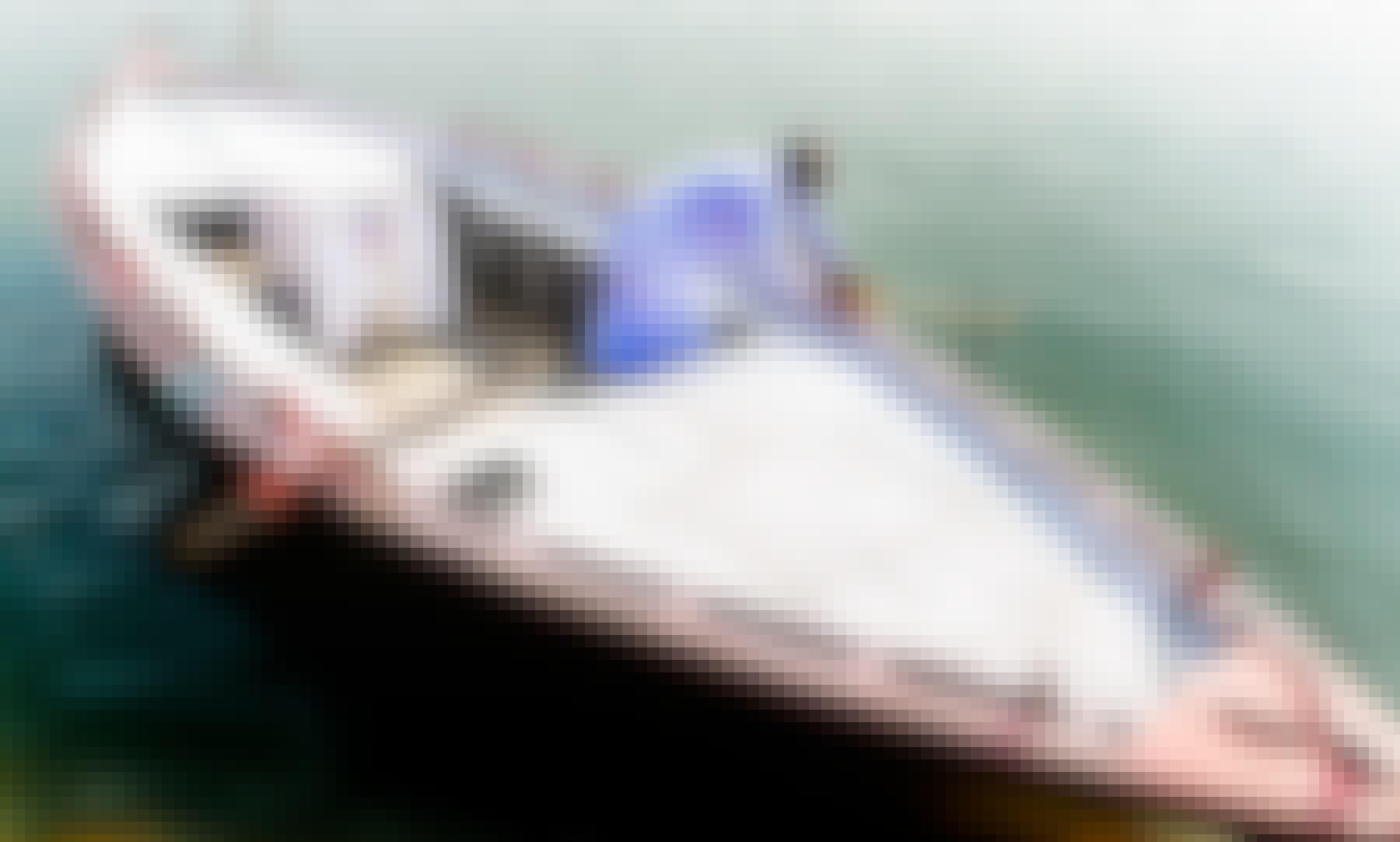 Power Boat Rental in Varanasi