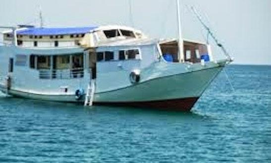 Boat Trips In Pemenang