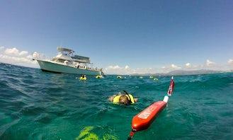 Snorkeling and Scuba Boat Tours in Fajardo, Puerto Rico