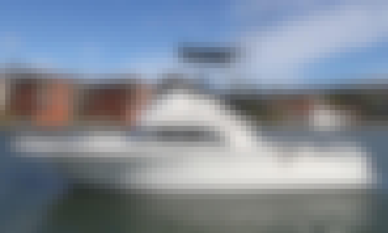 28' Bertram Sport Fishing Charter in Mazatlán, Mexico