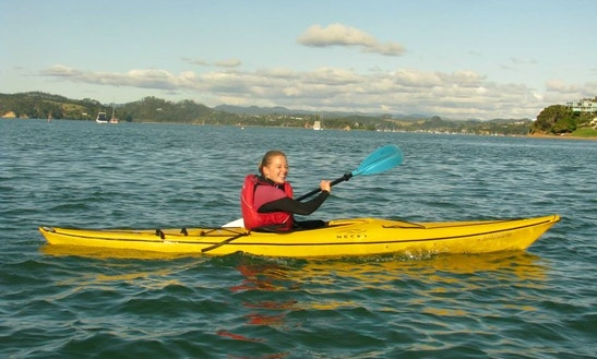 Single Kayak Rental In Paihia, New Zealand