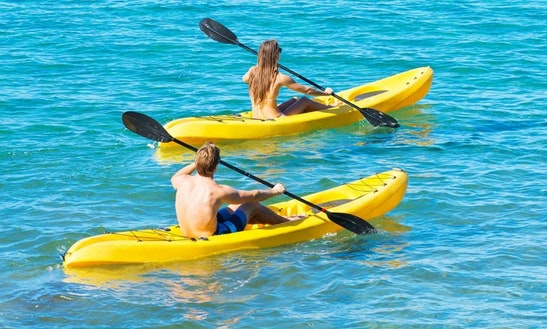 Kayak Hire In Narooma