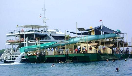 Reef Cruise Aboard The Bali Hai Ii In Indonesia