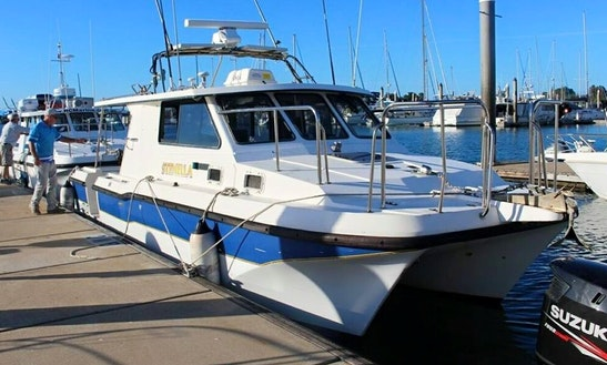 Fishing Charter On 28ft 'stenella' Power Catamaran In Mooloolaba, Australia