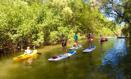 Stand Up Paddleboard Tours In Costa Rica