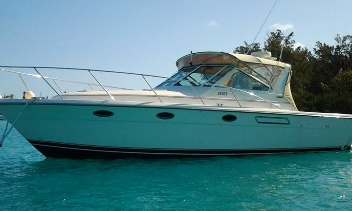 Motor Yacht Charters - 6 People Capacity in Bermuda