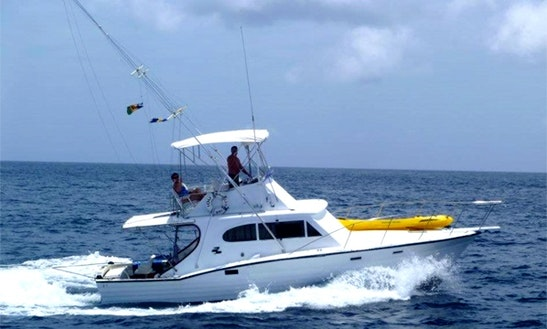 Deep Sea Fishing On 36ft Sport Fisherman Charter In St Michael, Barbados