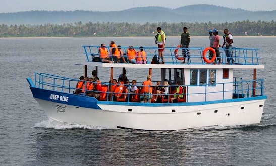 'deep Blue' Boat Whale Watching Trips In Mirissa