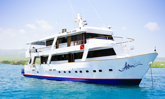Astrea Galapagos Diving And Naturalist Cruise In Puerto Ayora