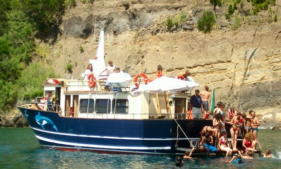 Whale And Dolphin Watching Tour In Portugal