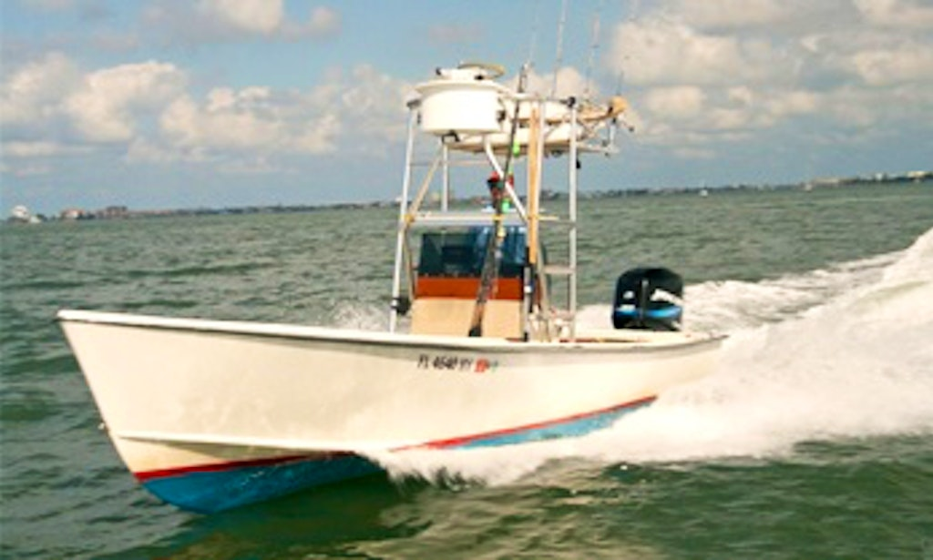 Tampa bay fishing charter on 22ft classic aquasport center for Florida fishing license price