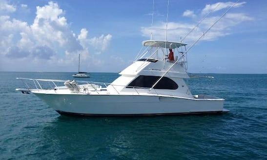 Charter On 50ft Ronin Sportfisher In San Juan, Puerto Rico