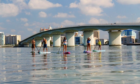 Sup Rental, Lessons & Eco-tours In Sarasota