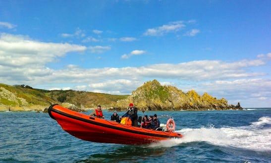 Boat Trips In Dartmouth