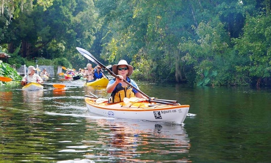 Sit-on-top Single Kayak Rental & Lessons In Clearwater