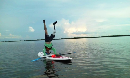 Sup Rental & Private Lessons In Clearwater