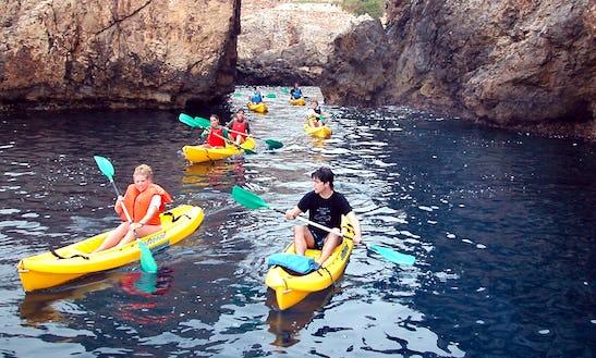 Single Kayak Rental In Halibut Cove
