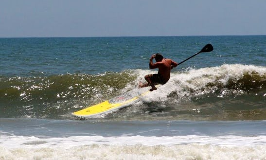 Surfing Lesson And Rental In Torrance