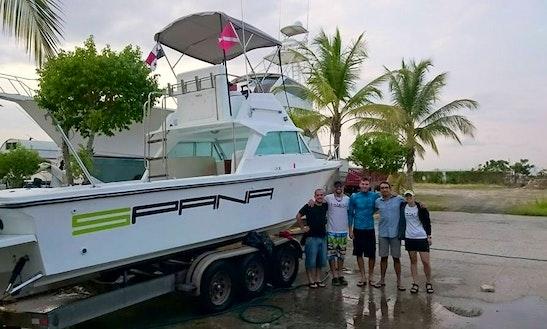Scuba Dive Boat In Panamá