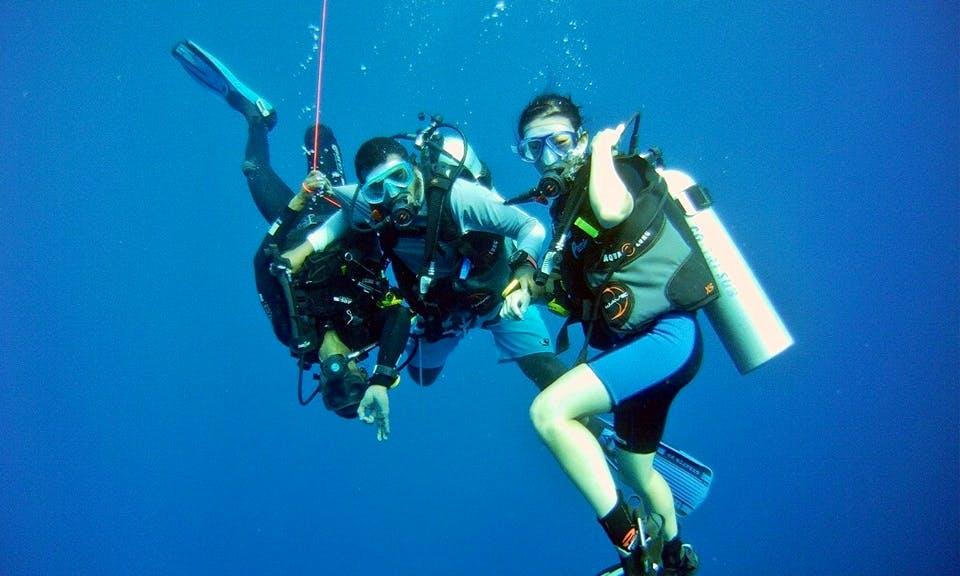 Diving In Maafushi