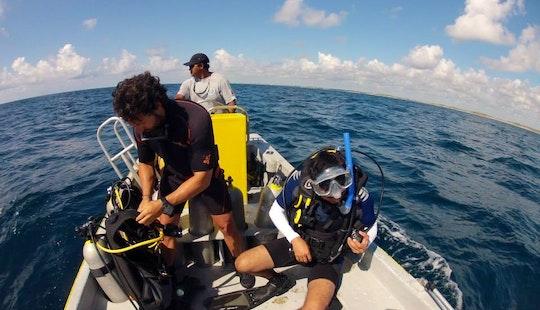 Discover Scuba Diving Adventure In Tulum, Mexico