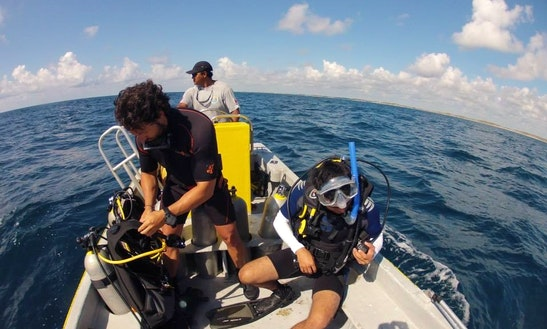 Discover Scuba Diving Adventure In Tulum, Mexico
