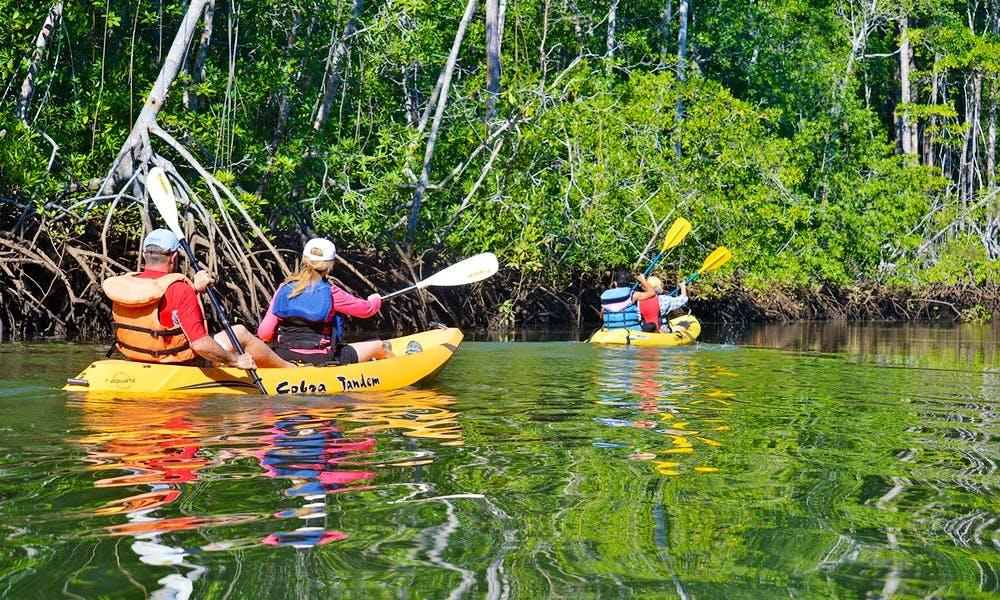 Tandem Kayak Tours in Playa Malpais