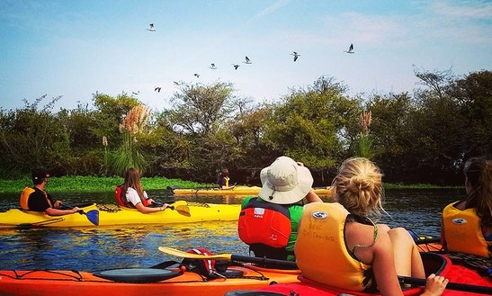 Kayak Rental And Tours In Antioch