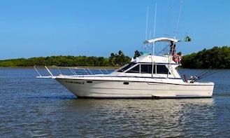 Fishing Charter On 40' Camargue Carbras Mar Sports Fisherman Yacht In Bahia, Brazil