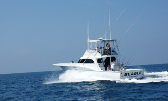 38ft sunrise ii offshore fishing charter in atlantic for Deep sea fishing morehead city nc