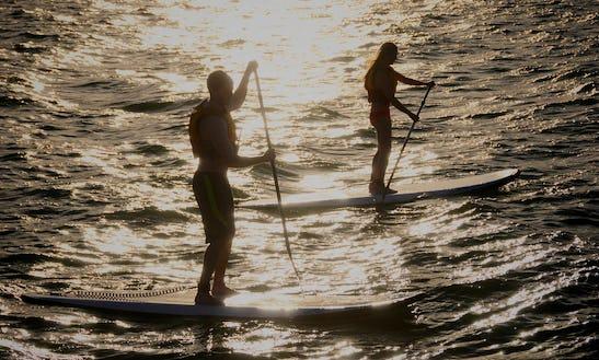 Paddleboard Rental In Los Angeles, California