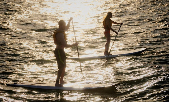 Paddleboard Rental In Los Angeles, California