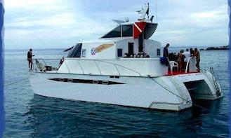 Catamaran Netuno - diving in Abrolhos - Caravelas, Bahia