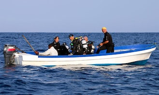 Boat Diving Trips & PADI Courses in Ifaty