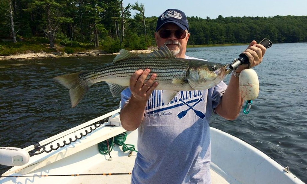 20 39 center console fishing charter in gardiner maine for Maine fishing charters