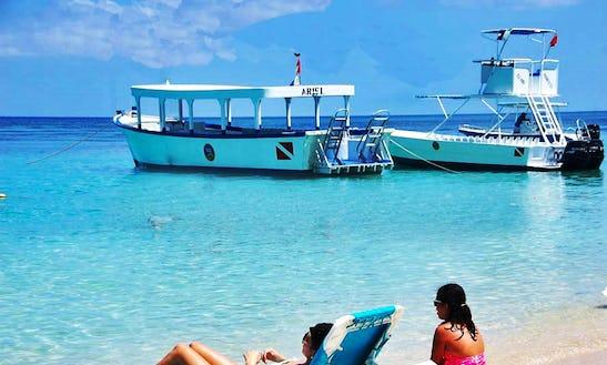 Island Boat Tour On Roatan Islands