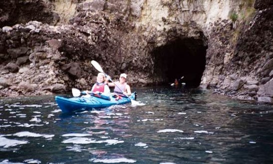 Sea Kayaking Tours In Cape Foulwind