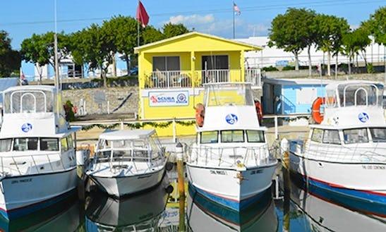 Dive Boats In Tavernier