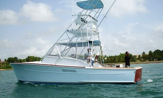 't-kat' Sport Fishing Charter In Treasure Island