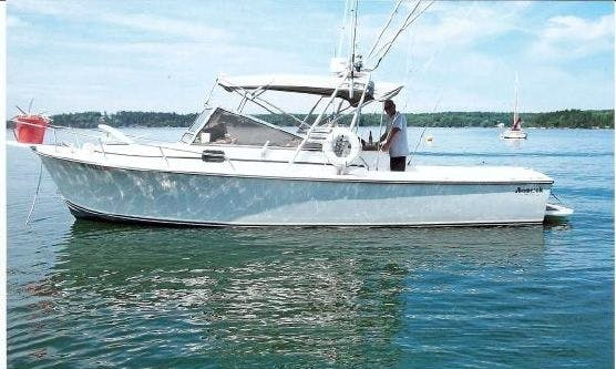 31' Fishing Charter In Piti