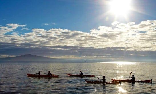 Sunset Kayak Tour In Auckland