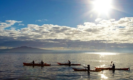 Sunset Kayak Tour In Auckland