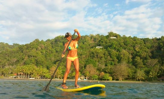 Partial Day, Full Day Or Multiple Days Sup Rental In Sarasota, Florida