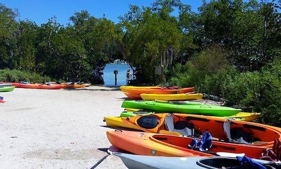 Join Us Kayaking In Sarasota, Florida Today!