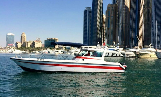 33ft Gulf Craft Dolphin Style Fishing Charter And Day Tour In Dubai, United Arab Emirates