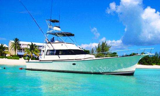 34 39 sport fishing yacht charter in west bay getmyboat for Deep sea fishing grand cayman
