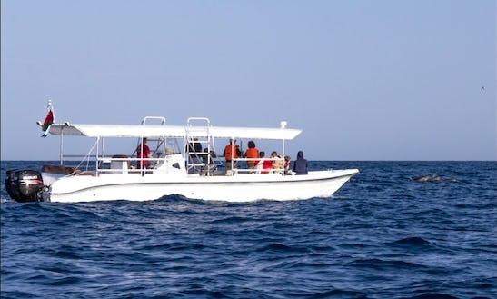 Dolphin Watch & Snorkeling Trips In Muscat