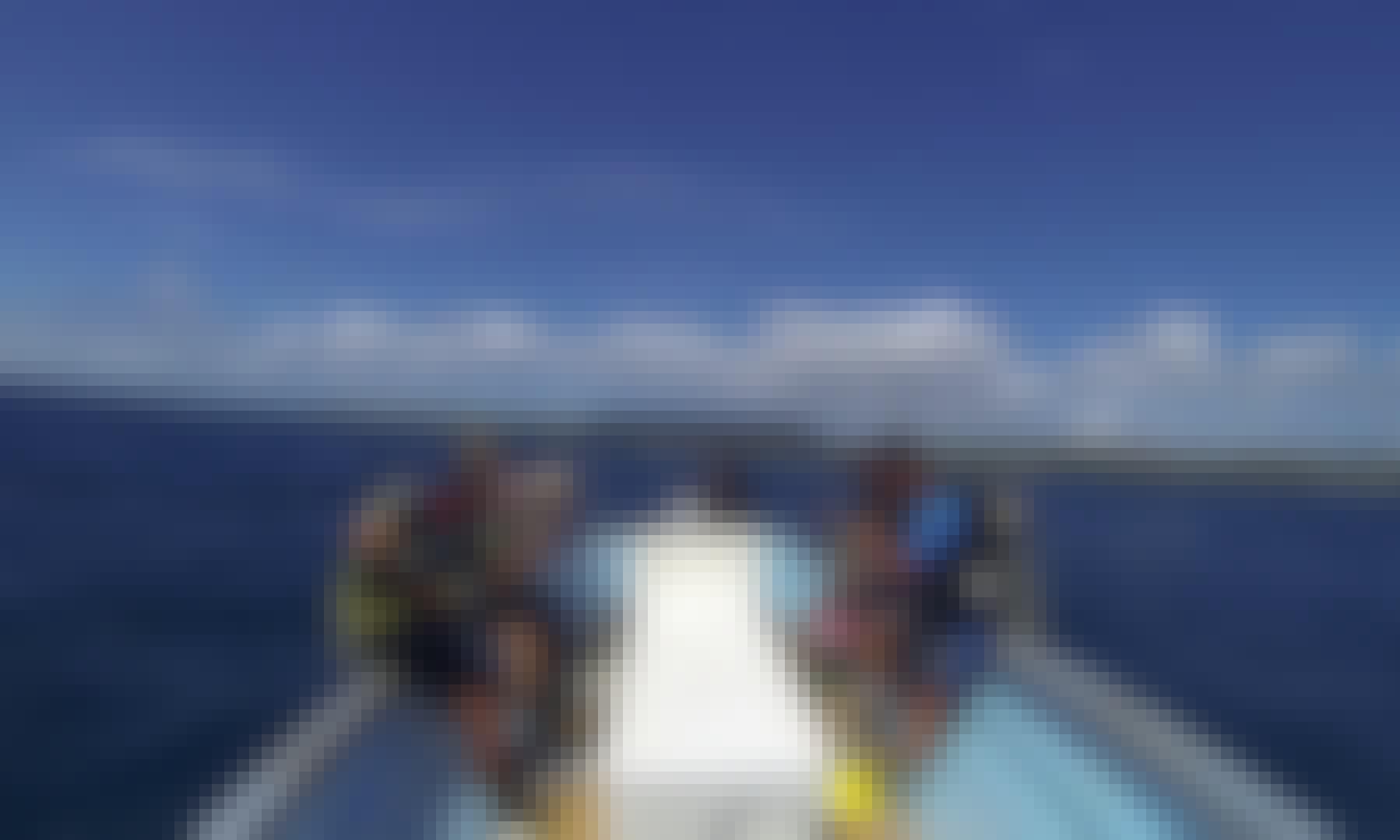 Boat Diving Trips in Speyside, Tobago